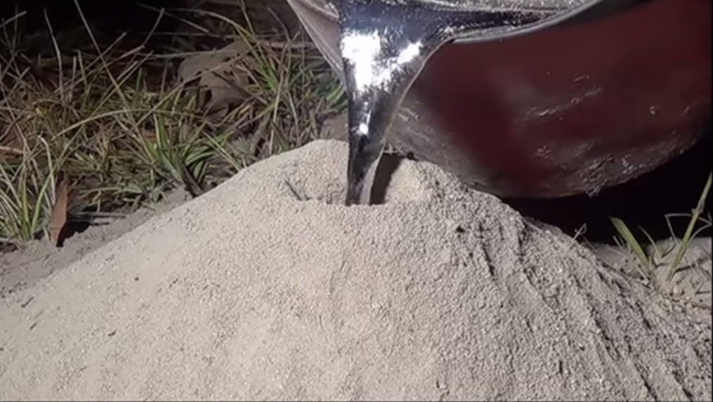 O que acontece se derramar alumínio líquido no formigueiro?