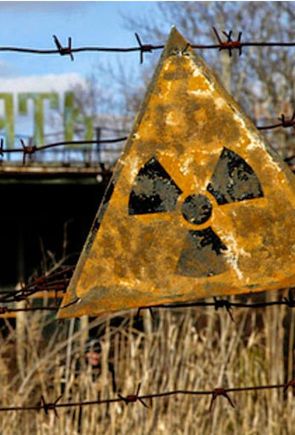 Chernobyl: conheça os fungos mutantes que comem radioatividade