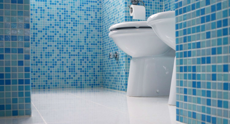 20 coisas mais sujas que sua privada e você não sabia