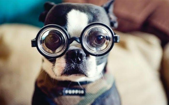 Como está sua visão? Faça o teste