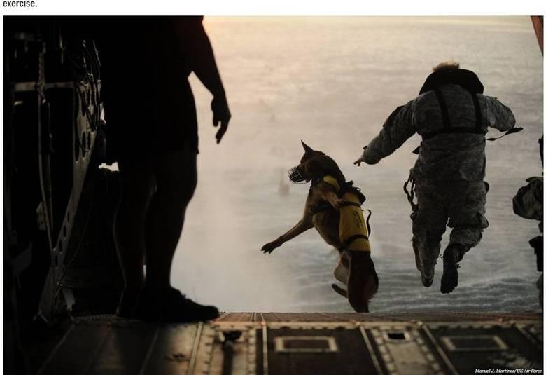 ... os treinamentos militares nos Estados Unidos também não são moleza. Na  foto aaee4ad3b26