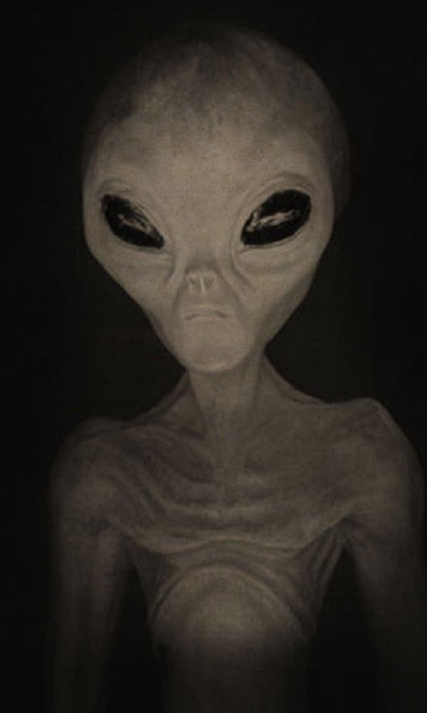 Resultado de imagem para imagens surpreendente de ET
