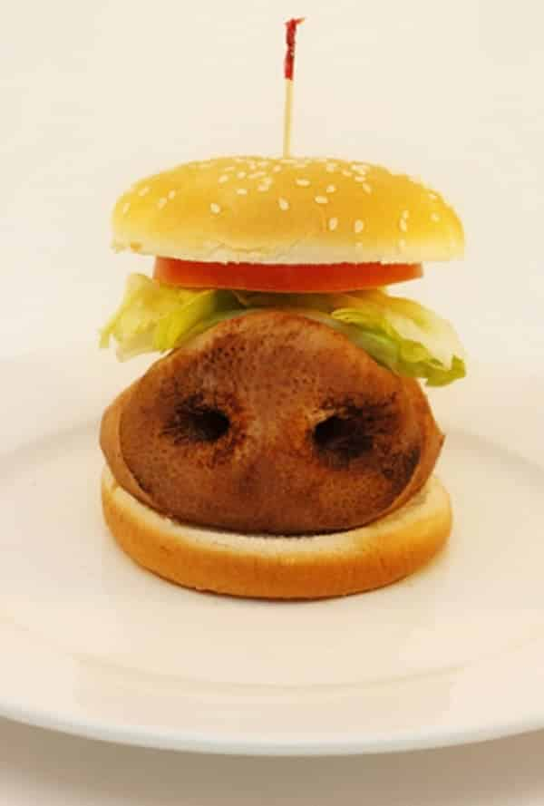 O que tem no seu sanduíche? Esse ensaio chocante revela
