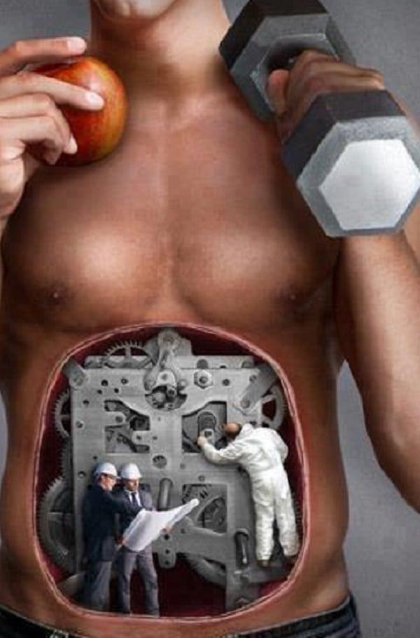 O que acontece no seu corpo depois do exercício físico? Descubra