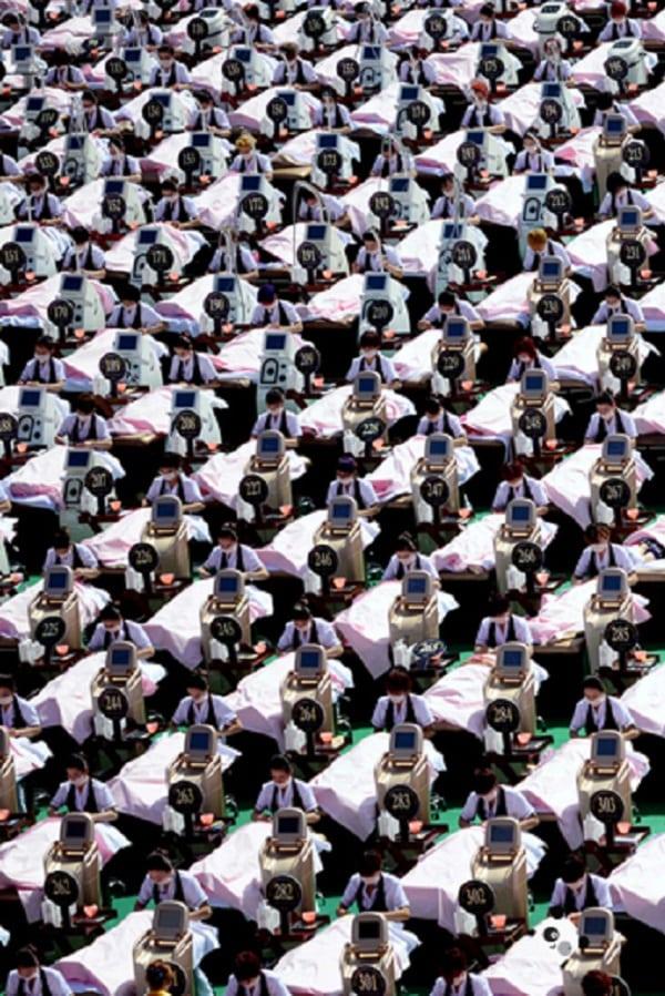 Onde está o panda? 17 desafios para encontrar o panda fujão