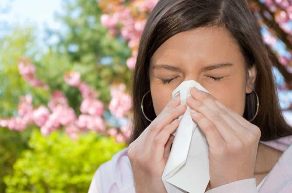 Rinite alérgica: remédios naturais para fazer em casa