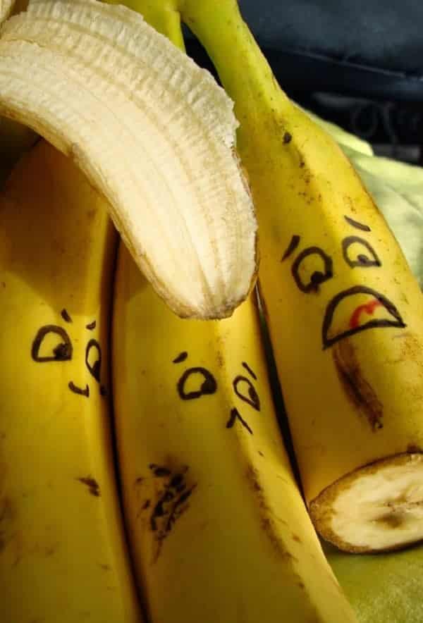 Extinção das bananas pode acontecer em 5 anos