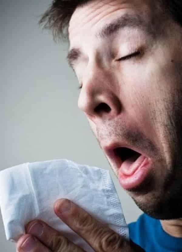O verdadeiro remédio contra a gripe está no prato, afirmam estudos