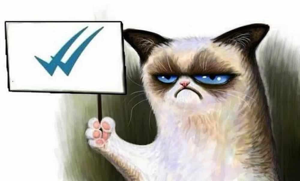 Como saber se leram sua mensagem no WhatsApp, mesmo sem os tiques azuis