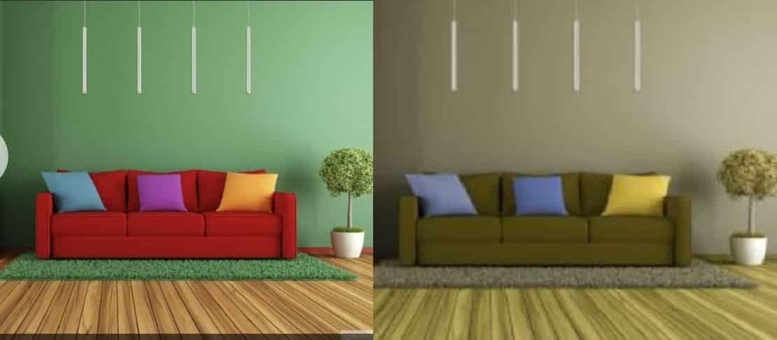 Visão dos daltônicos: como funciona? Veja como eles enxergam as cores