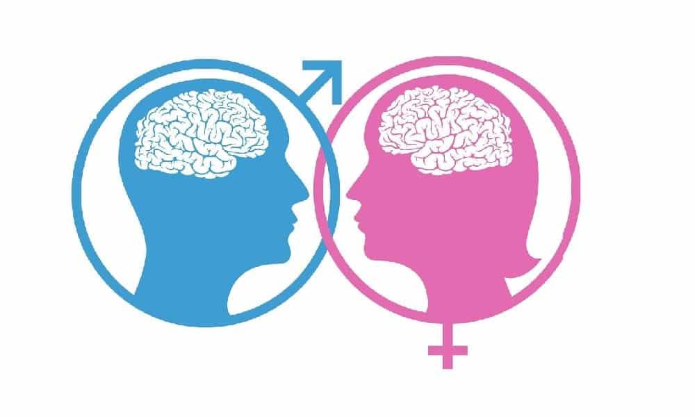 Você tem o cérebro feminino ou masculino? Faça o teste