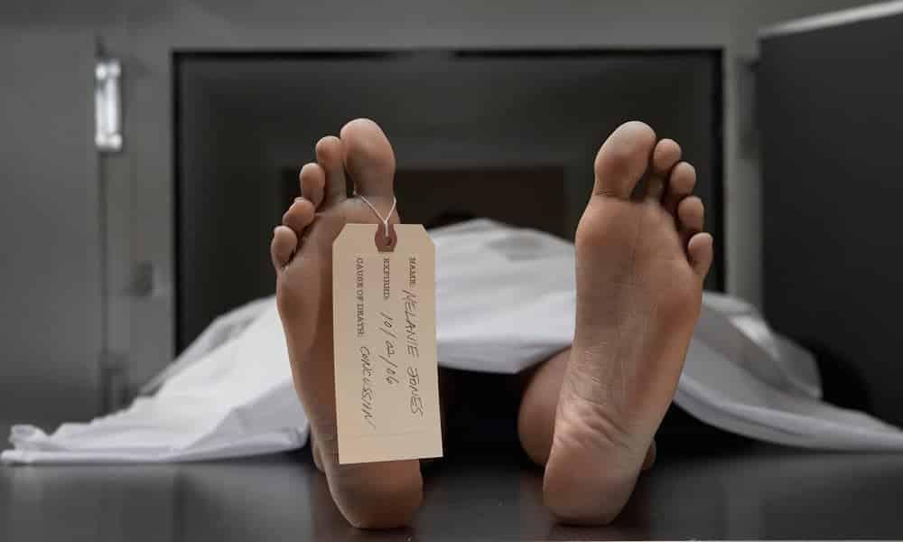 Cientista descobre técnica capaz de ressuscitar os mortos