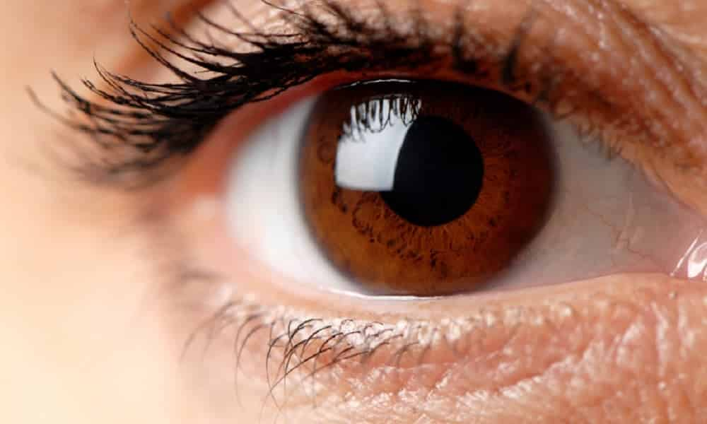 Resultado de imagem para olhos castanhos interessantes