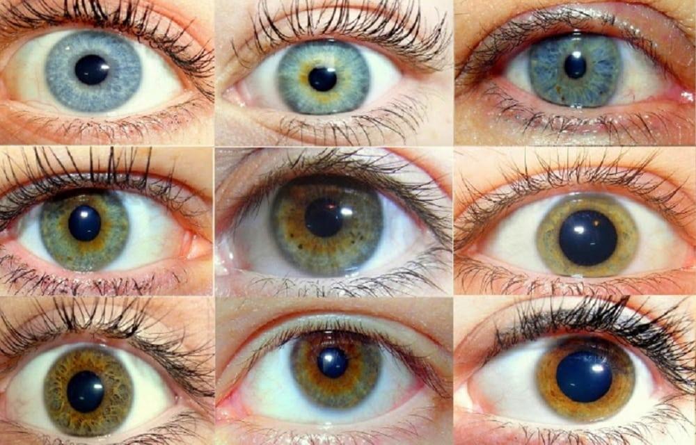 Descubra o que a cor dos seus olhos revela sobre sua personalidade