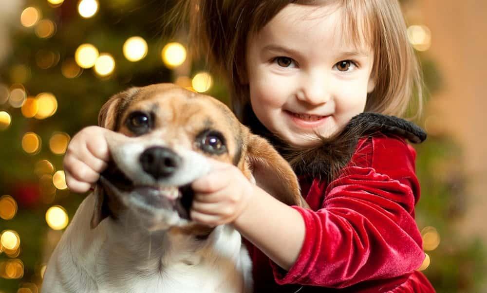 É melhor para as crianças ter um um cachorro do que um irmão, diz estudo