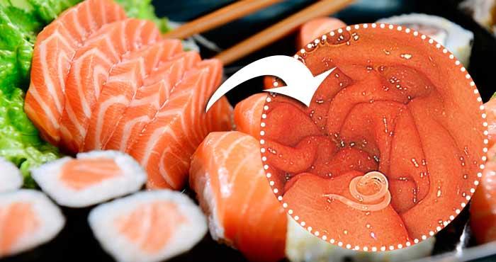 Garota contrai verme que chegou a quase 3 metros após comer sashimi infectado