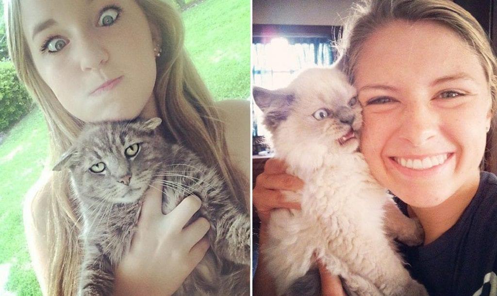 Fotos de gatos – 40 bichanos que odiaram sair na selfie de seus humanos