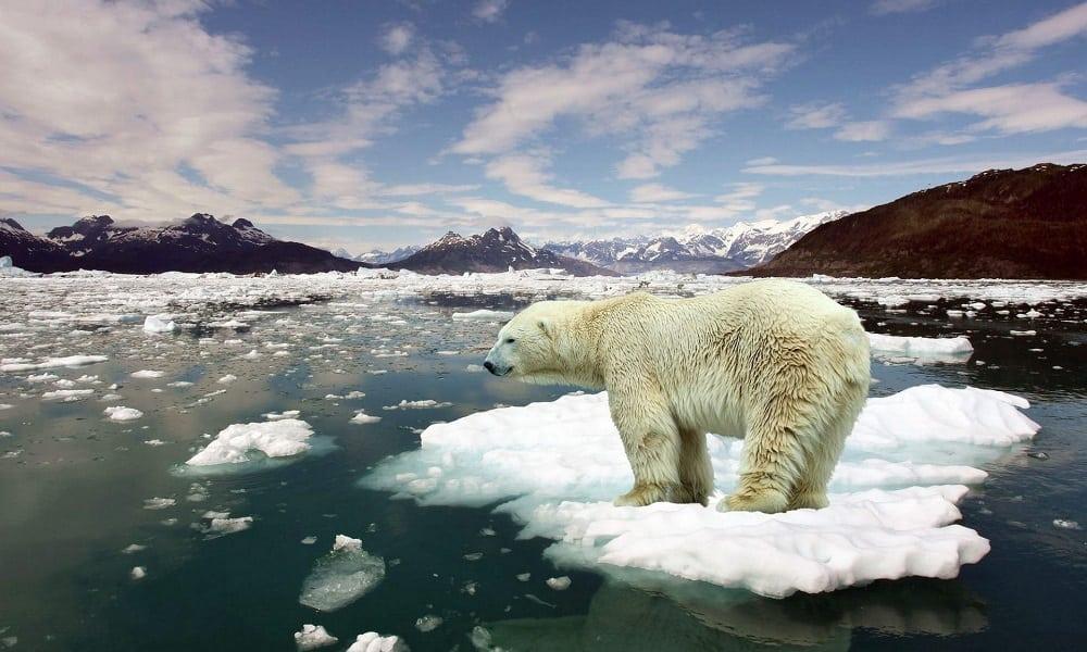 Pesquisa diz que só temos 10 anos para salvar o planeta do aquecimento global