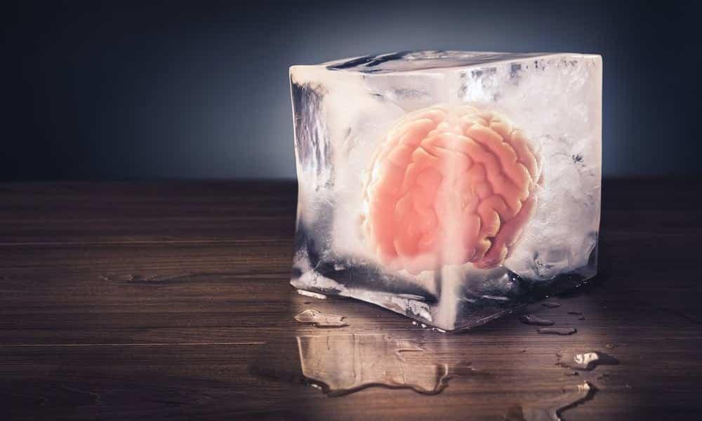 Neurologia diz que em 3 anos cérebros congelados poderão ser despertados e transplantados