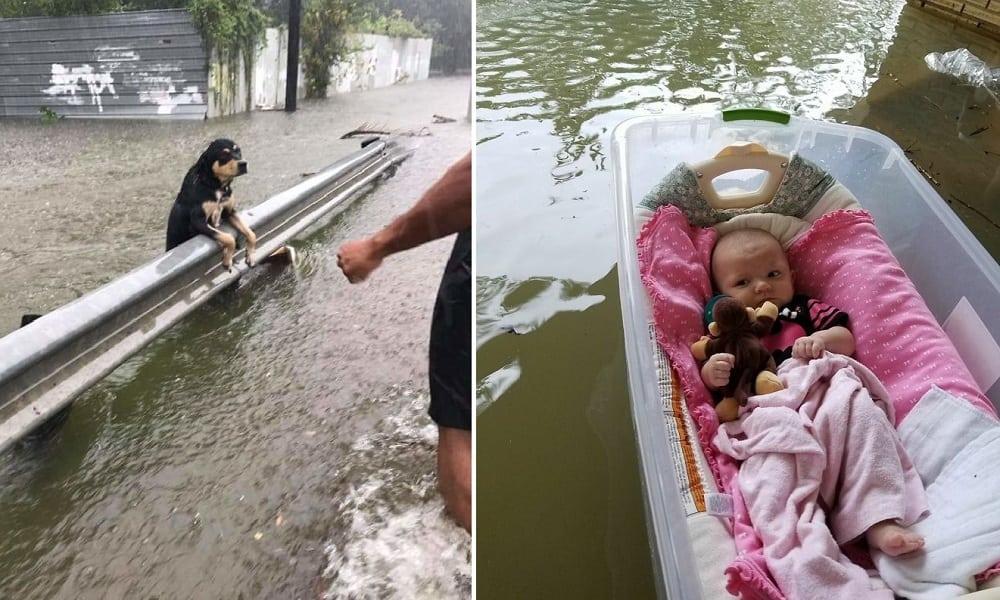 24 fotos que mostram as consequências devastadoras do furacão Harvey no Texas