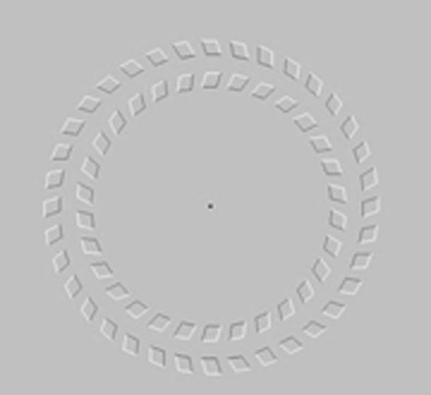 Confira 25 das ilusões de ótica mais incríveis que você verá em toda sua  vida  1f252383cb
