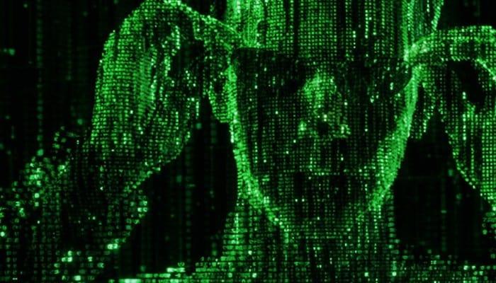 10 sites mais assustadores já encontrados na internet