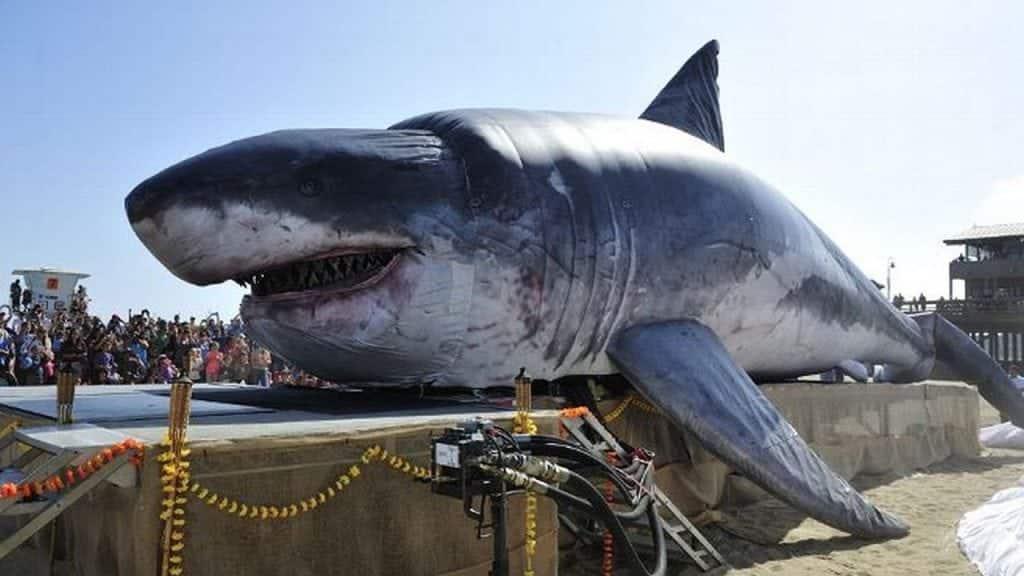 Megalodon – Será que o maior tubarão pré-historico ainda existe?