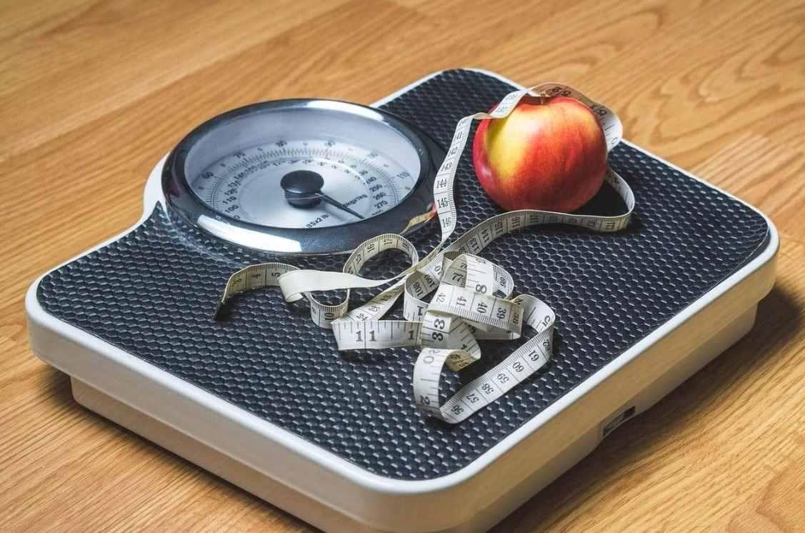 calorias por dia perder peso
