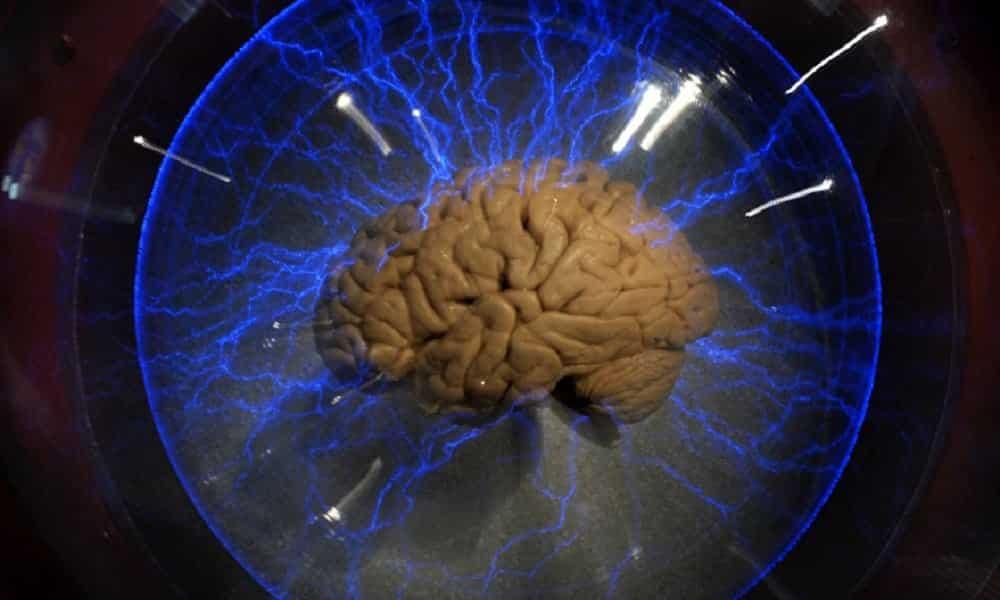 Como memorizar qualquer coisa, segundo a neurociência