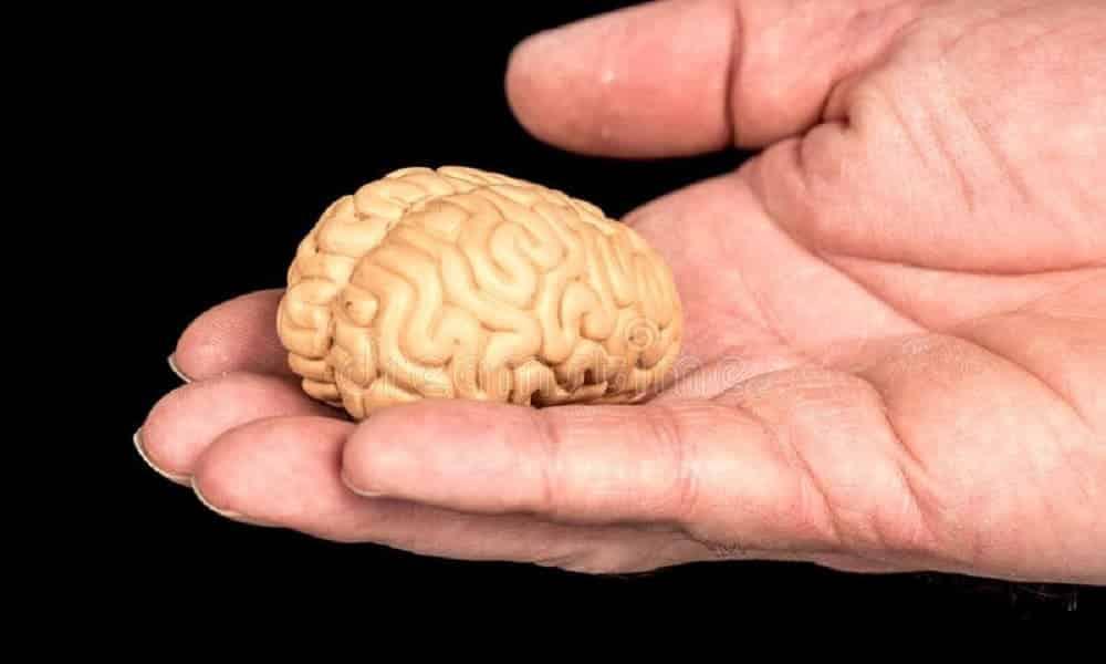 Teste de inteligência: 3 perguntas simples para testar o raciocínio lógico