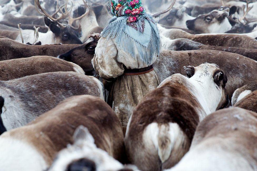 A vida das mulheres nômades esquecidas no deserto gelado da Sibéria