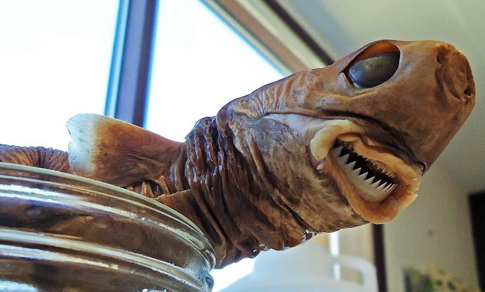 Tem Na Web - 10 bizarras espécies de tubarão documentadas pela ciência