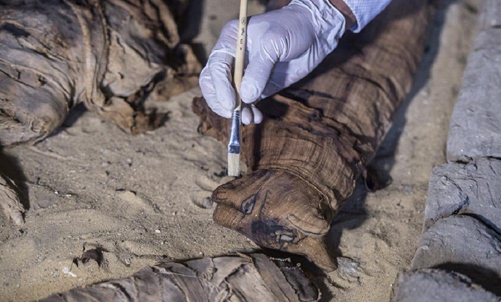 Gatos mumificados, de mais de 6 mil anos, são encontrados no Egito