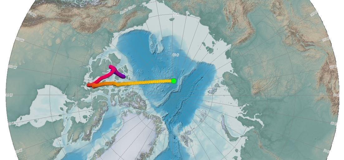 Polo Norte está se movendo do Canadá para a Rússia