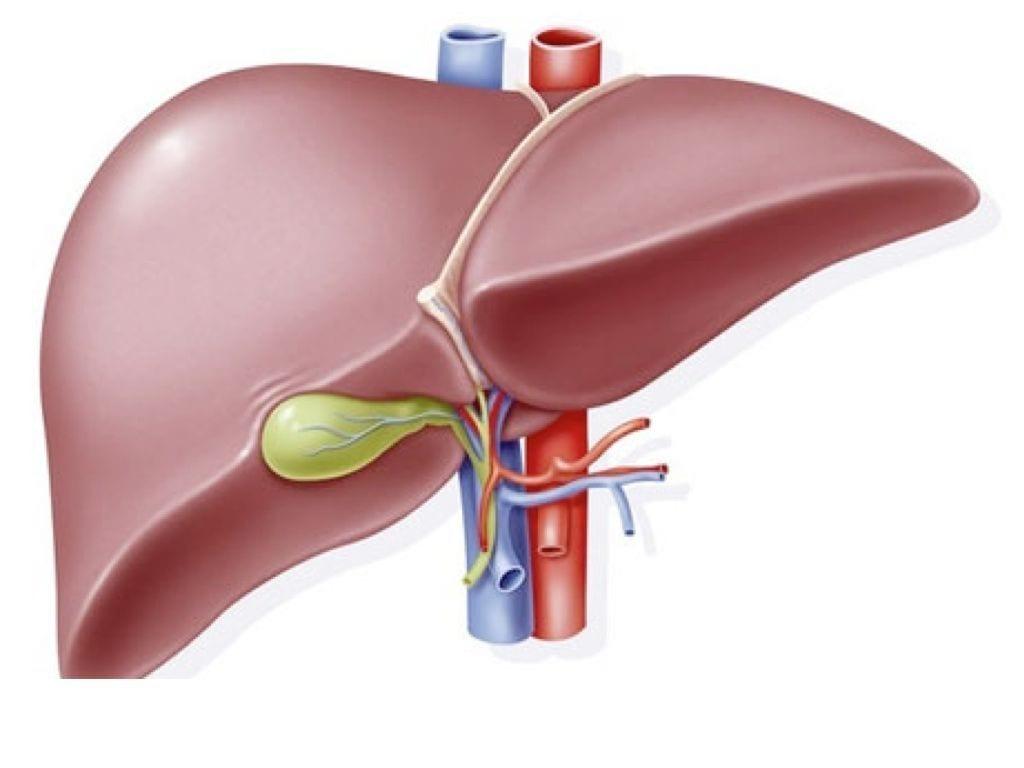 Quais sintomas podem indicar problema no fígado?