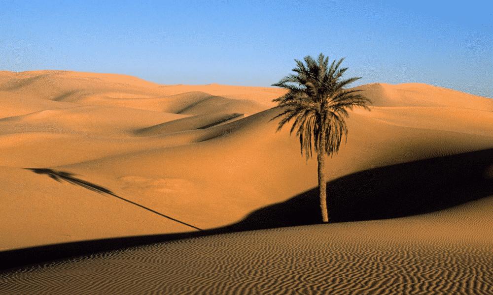 Deserto do Saara: onde fica? como é o clima? Realmente é muito seco?