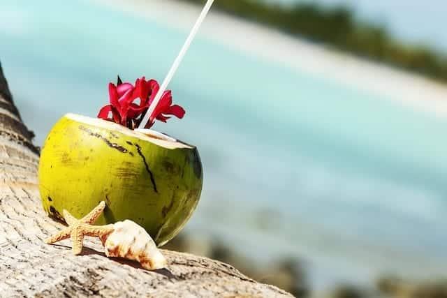 7 motivos essenciais para se beber bastante água de coco
