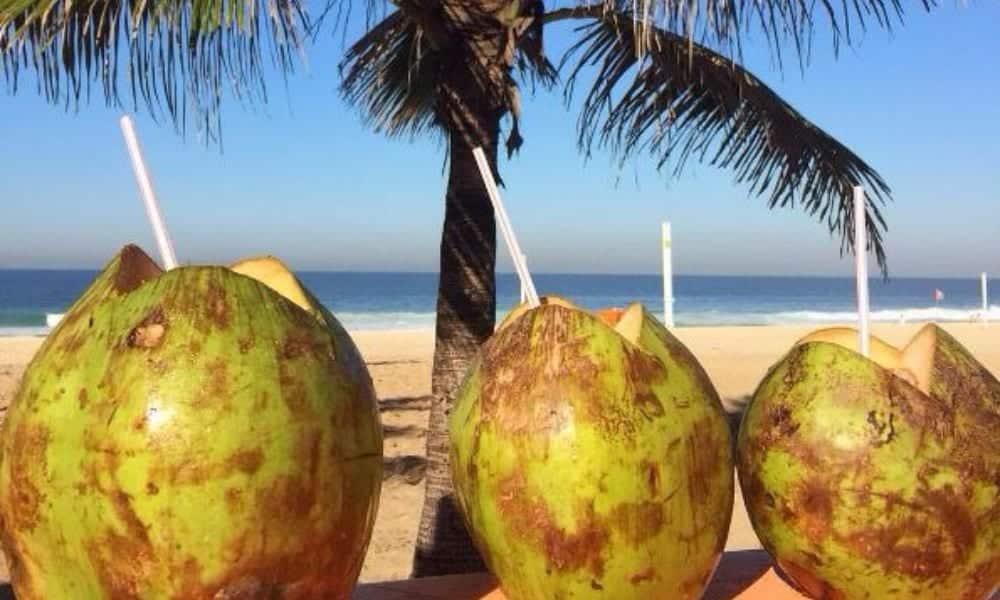Benefícios da água de coco para seu corpo e sua saúde