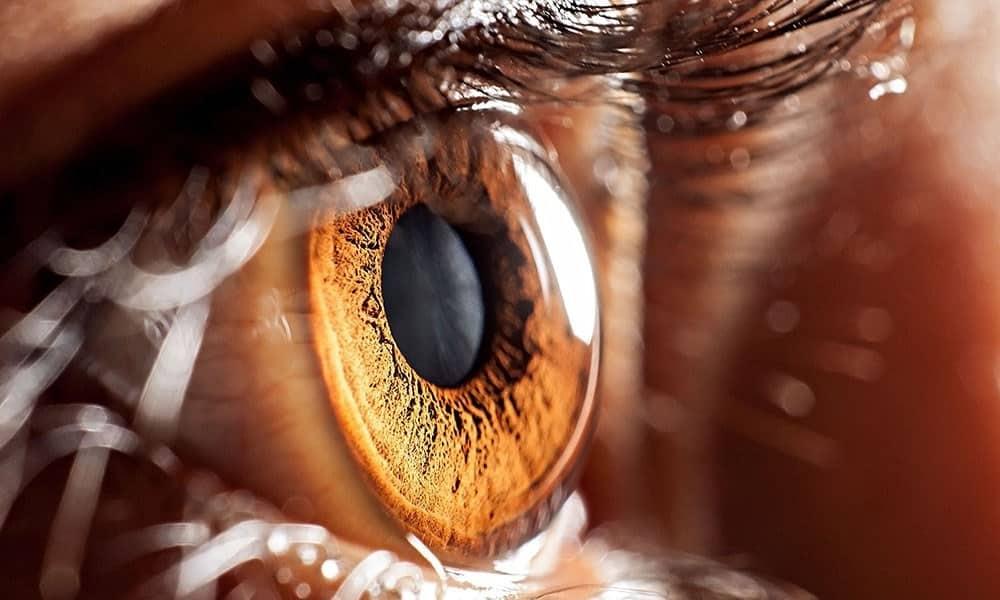 Pupilas dilatadas: 7 principais causas e quando são um risco para a saúde