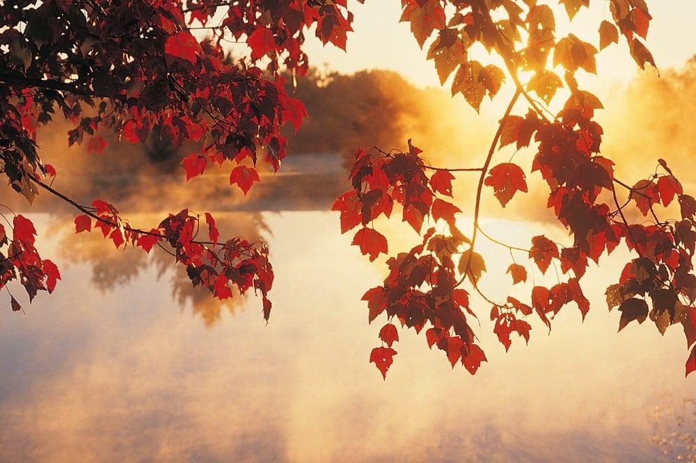 Equinócio de outono, o que é, o que significa e o quanto dura?