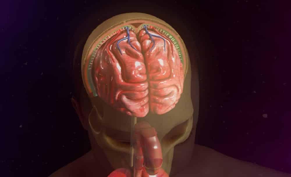 Meningite, o que é e quais os sintomas dessa doença que pode ser fatal