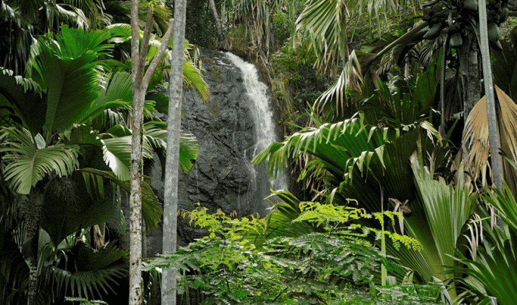 Jardim do Éden, onde fica e curiosidades sobre o local bíblico