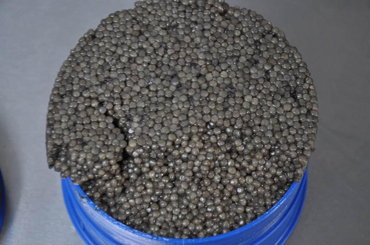 Caviar, o que é, de onde vem e por que é tão caro?
