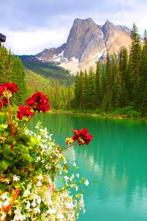 Conceito e dicas de fotos de paisagem, além de 50 fotos de inspiração