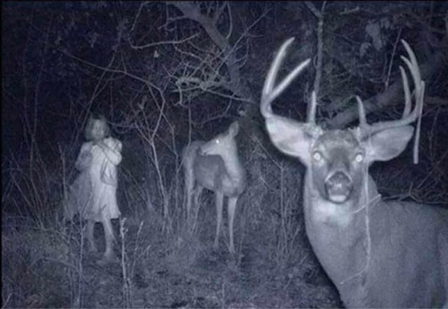 Confira agora 20 imagens assustadoras da internet