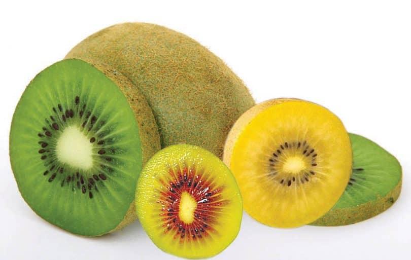 9 frutas que cachorro não pode comer, ou ao menos é necessário cautela