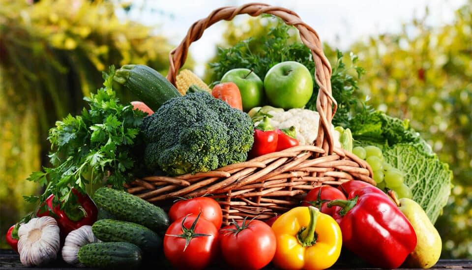 Qual é a diferença entre verdura, legume e hortaliça? Veja exemplos