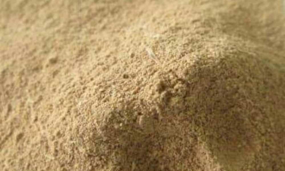 O que é Ibogaína, quais os efeitos e porque é proibida no Brasil
