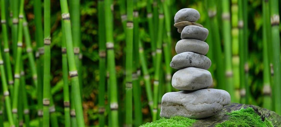 O que é ikigai?