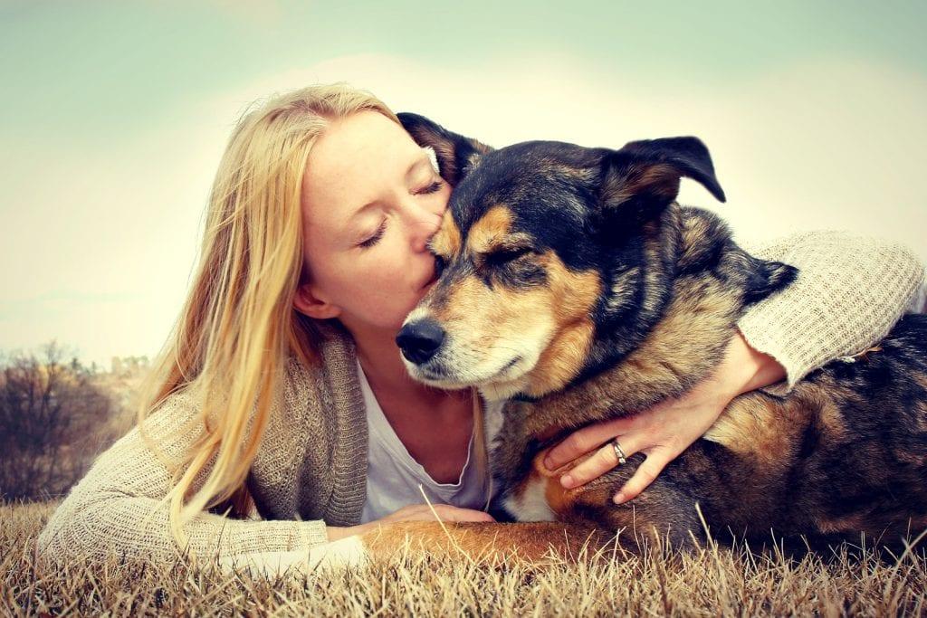 Idade de cachorros – Como calcular (em relação à idade humana)